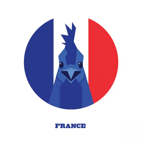 World Cup Postcards France
