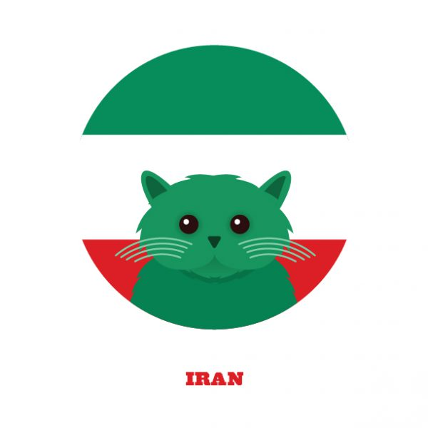 World Cup Postcards Iran